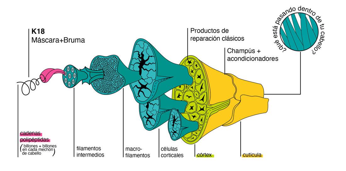 Como funcionan los productos de la marca K18 mascarilla leave-in bruma